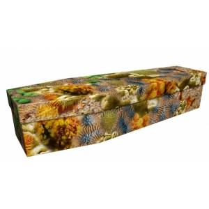Ocean Reef Deep Sea Nature - Landscape / Scenic Design Picture Coffin