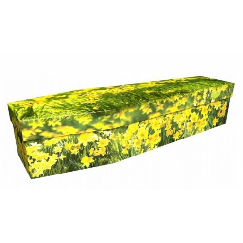 The Field of Daffodils - Premium Cardboard Picture Coffin