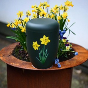 Biodegradable Cremation Ashes Funeral Urn / Casket - LET BLOSSOMS SPEAK