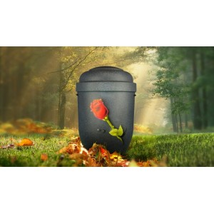 Biodegradable Cremation Ashes Funeral Urn / Casket - ROSE