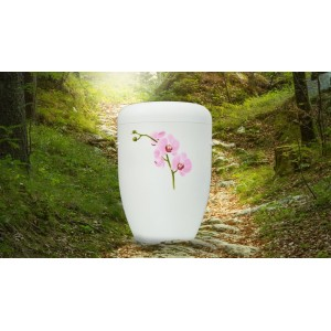 Biodegradable Cremation Ashes Funeral Urn / Casket – THAI PINK ORCHID