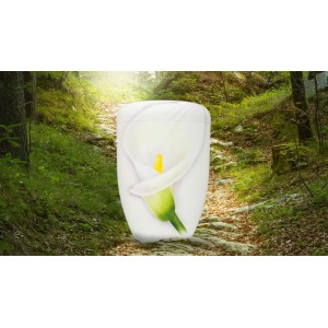 Biodegradable Cremation Ashes Funeral Urn / Casket – CALLA LILY
