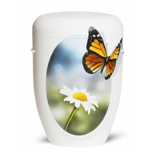 Biodegradable Cremation Ashes Funeral Urn / Casket – MONARCH BUTTERFLY