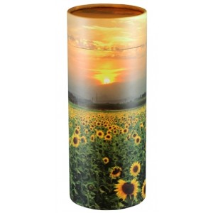 Adult Scatter Tubes - SUNFLOWER FIELDS