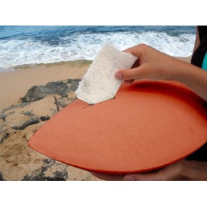 Biodegradable Cremation Ashes Urn - THE MEMENTO (Coral)