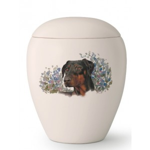 Large Ceramic Cremation Ashes Urn – Pet Dog Animal – Hand Painted Doberman Pinscher Motif.