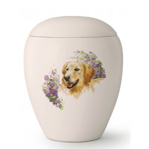 Large Ceramic Cremation Ashes Urn – Pet Dog Animal – Hand Painted Golden Retriever Motif