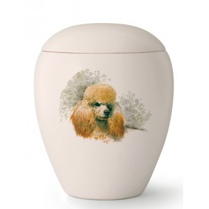Medium Ceramic Cremation Ashes Urn – Pet Dog Animal – Hand Painted Poodle Motif