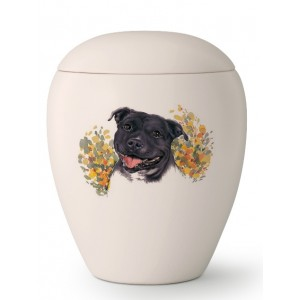 Medium Ceramic Cremation Ashes Urn – Pet Dog Animal – Hand Painted Staffordshire (Staffy) Motif