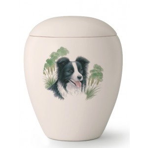 Medium Ceramic Cremation Ashes Urn – Pet Dog Animal – Hand Painted Border Collie Motif
