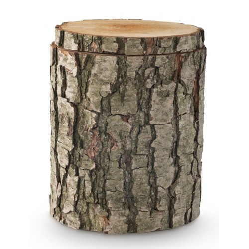 Alder Tree Trunk Cremation Ashes Urn – The Natural Choice